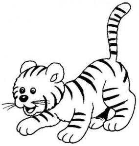 lindo dibujo tigre